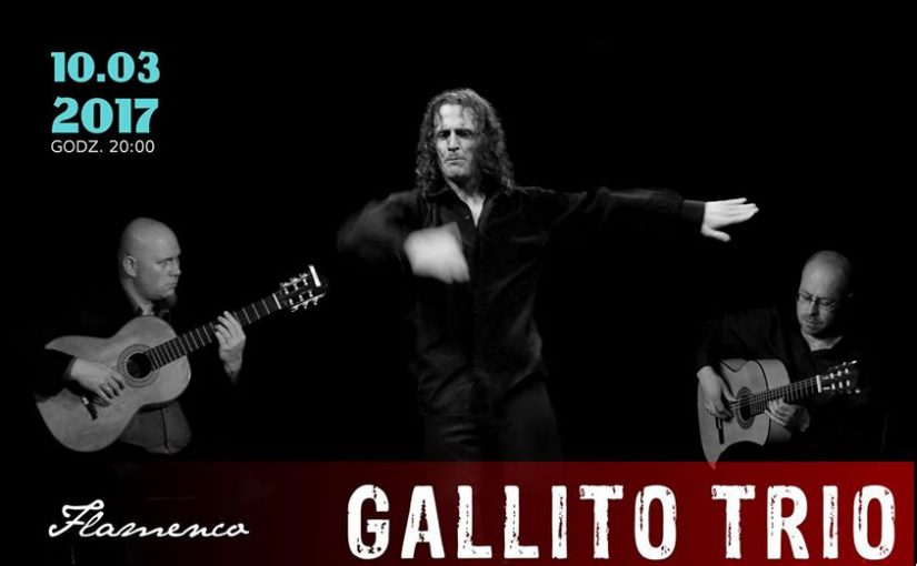 GALLITO TRIO